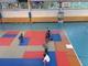 Galeria wakacje pilka judo szachy