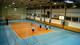 Galeria koszykówka