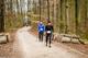 Galeria II Otwarte Mistrzostwa Gminy Trzebnica w Nordic Walking