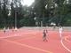 Galeria tenis siatkonoga